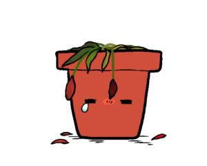 花(枯れる)