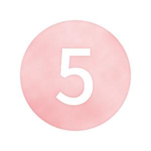 数字(5)